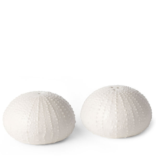 Sea Urchin Salt and Pepper Shakers, White