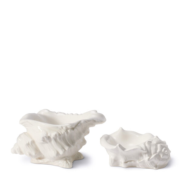 Conch Shell Dish, Set of 2