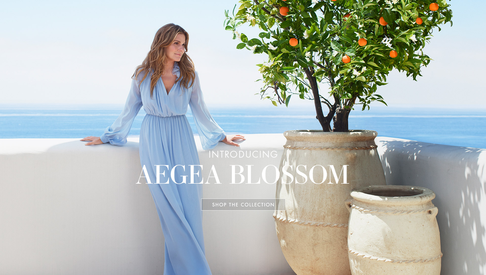 Aerin Lauder stands in a blue dress with ocean views behind her.