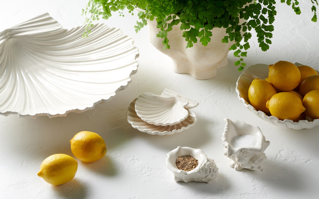 Shell platters and conch shell dish set